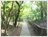 立田自然公園写真